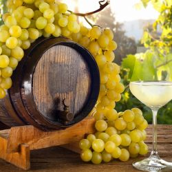 wine_barrel_grapes